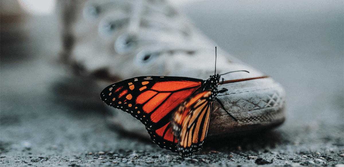 Anxietatea, Fluturii Din Stomac și Fascinanta Legătură Dintre Creier și Intestine