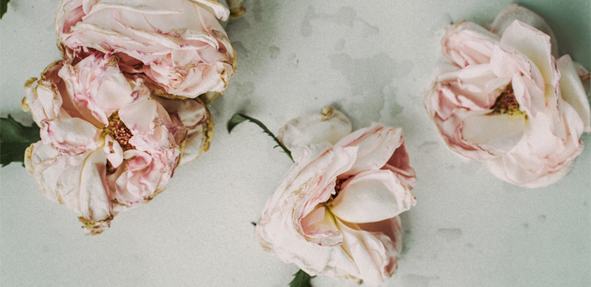 Cititorii întreabă: Despre Psihologia Pierderii și Păstrarea Sănătății Relaționale