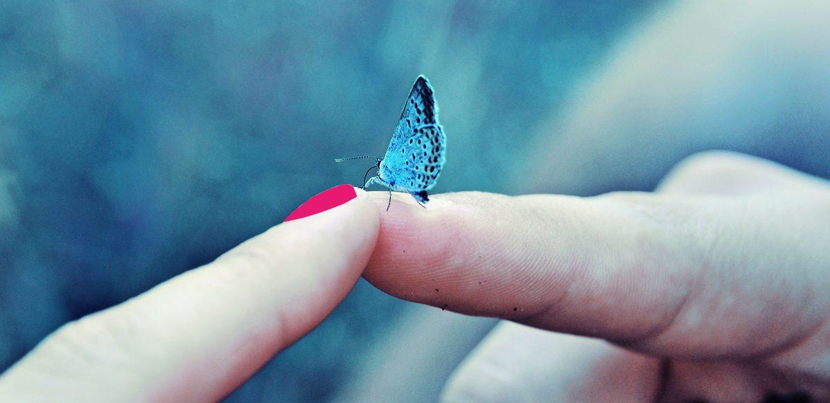 Despre Oameni și Fluturi