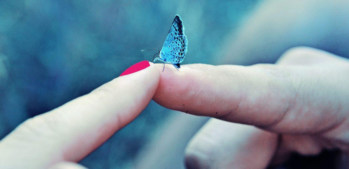 Despre Oameni și Fluturi. Nu Putem Ajunge Pe Tărâmul Fericirii Fără Să Fi Parcurs Aventura Vieţii