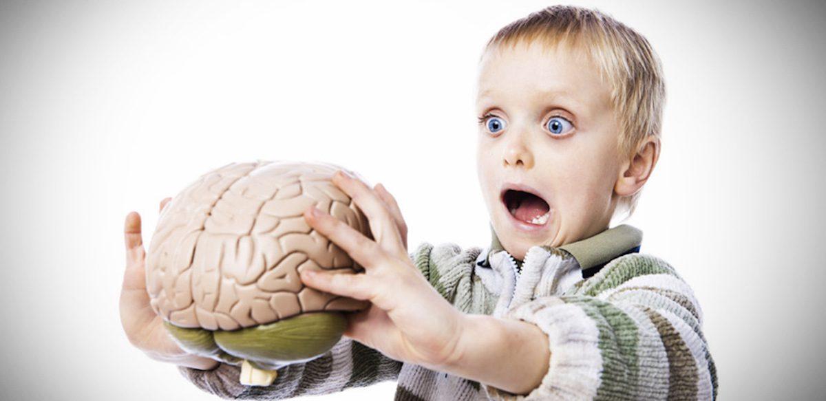 Învățându-i Pe Copii Despre Creier, Punem Bazele Solide Ale Inteligenței Emoționale