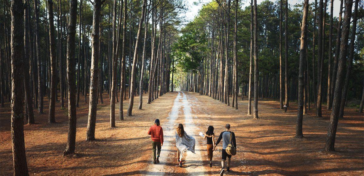 Doza De Natură. De Cât Timp Petrecut în Natură Ai Nevoie Ca Să Simți Un Impact Pozitiv Asupra Stării De Bine?
