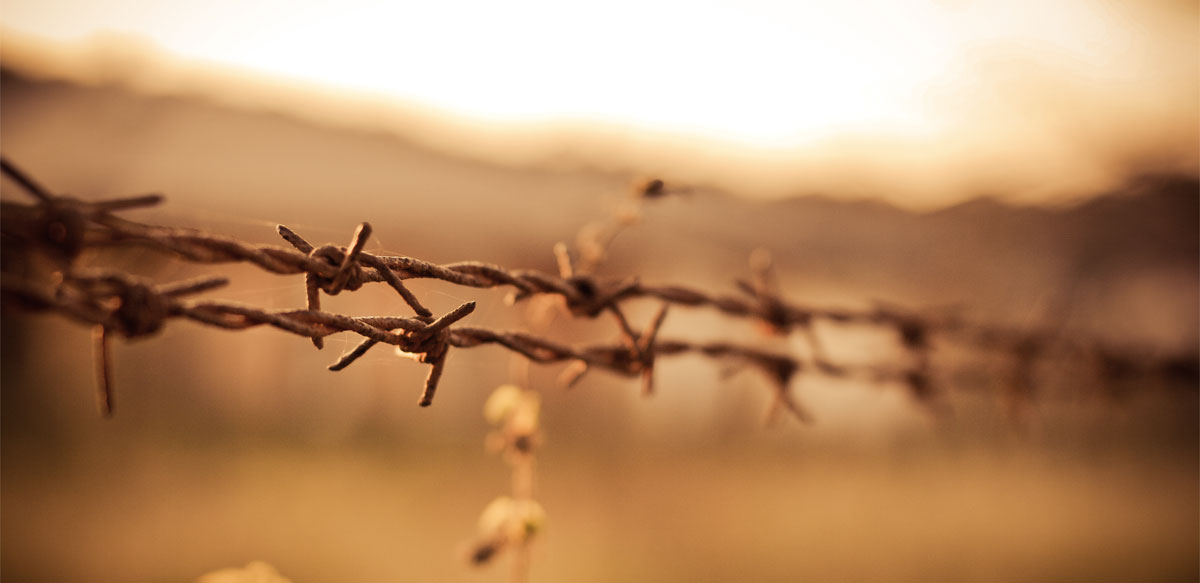 Holocaustul, Trauma Ce A înghețat Timpul