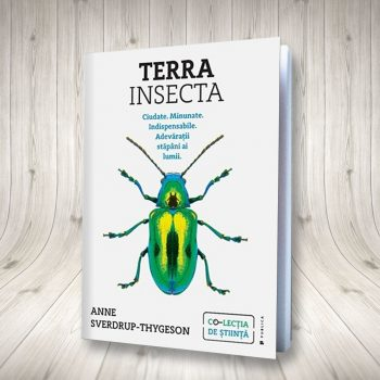 Terra Insecta